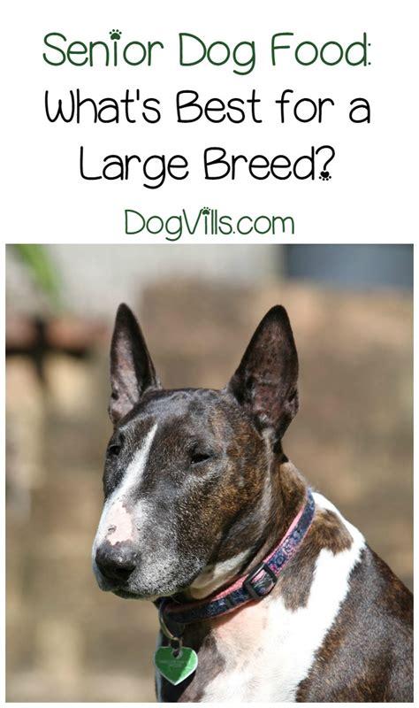best puppy food for large breeds best senior food for large breeds
