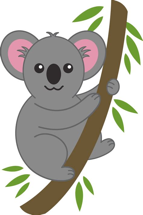 koala clipart koala on tree branch free clip
