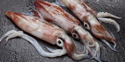 the aigua blava cookbook 7 squid with romesco sauce huffpost uk