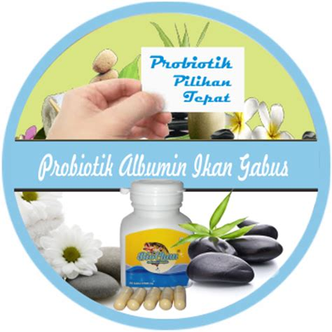 Chalbumin Kapsul Albumin Ikan Gabus Probiotik Albumin kapsul albumin ikan gabus membantu menyembuhkan luka bekas