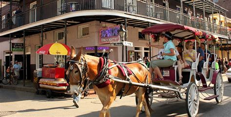 things to do in new orleans on new years land of the free 5 fab freebies in new orleans free