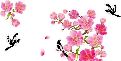 wallpaper bunga sakura kartun 24 gambar bunga sakura jepang tercantik terindah gambar