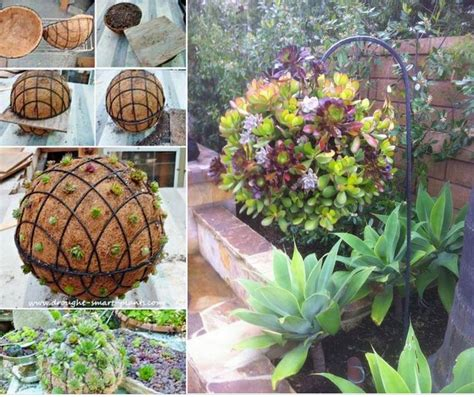 Make Plant - gorgeous gardening create your own hanging succulent