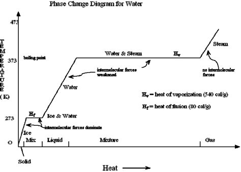 phase change diagram chemistry water phase change diagram water free engine image for