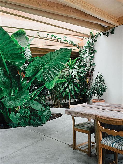indoor patio best 25 indoor outdoor ideas on indoor