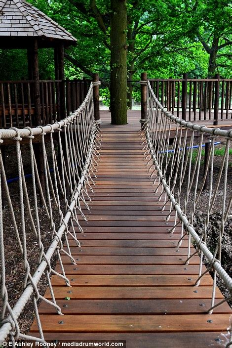 how to build a swinging bridge for kids new book uncovers tree house designs from british brothers