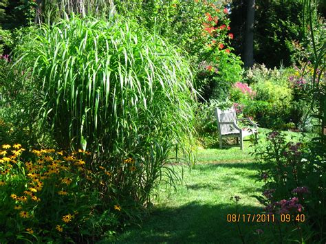 Garden Of Ideas Ridgefield The News From Owl Hollow Inspiring Thoughts At The Garden Of Ideas