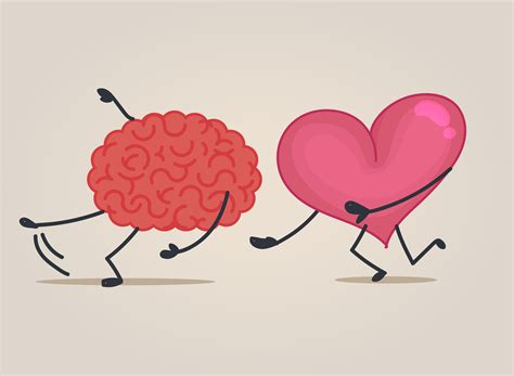 heart and brain an emotional wellness balance center amygdala