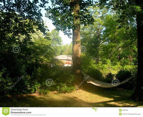 hammock in backyard hammock in backyard royalty free stock images image 945169