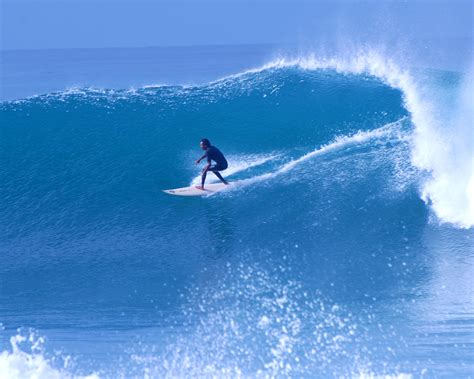 great surfing quotes todos santos eco adventures