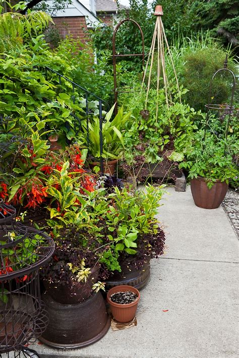 edible container garden 46 best edible container gardens images on