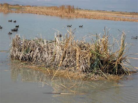 duck hunting from a boat blind duck blinds duck buddies duck blinds fiberglass blind