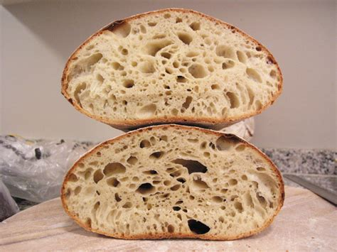 90 hydration sourdough 3 27 10 sourdough 90 rye and beana s favorite