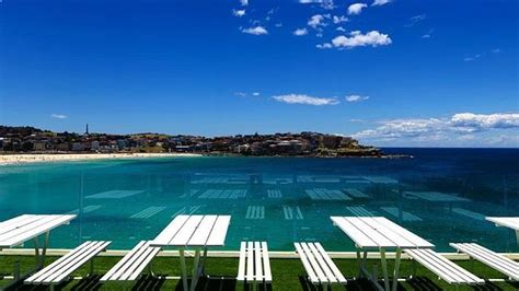 icebergs dining room and bar icebergs dining room and bar rooftop bar in sydney