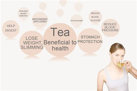 Where To Buy Skinnydip Detox Tea by Detox Tea 14 Day Organic Slimming Tea Reducing
