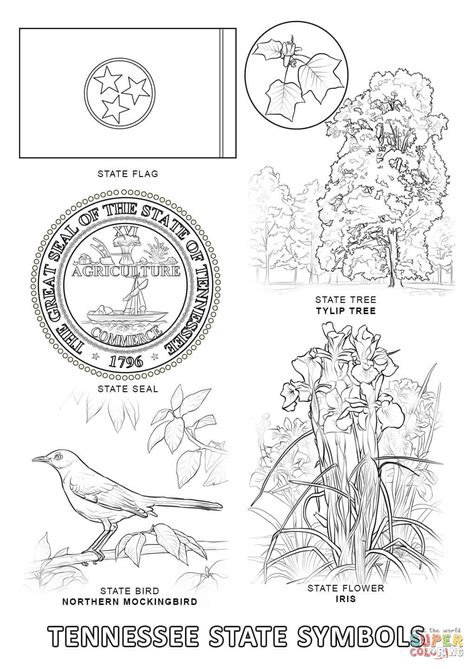 tennessee state symbols coloring page free printable
