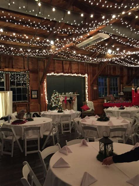 Rustic Sparkle Christmas/Holiday Party Ideas   Photo 1 of