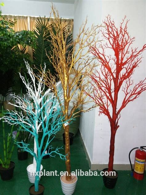 como pintar un pino natural seco planta de la flor del 225 rbol bonsai 225 rbol seco stereocaulon