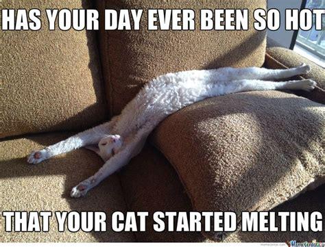 Summer Heat Meme - best 25 heat meme ideas on pinterest the stranger i