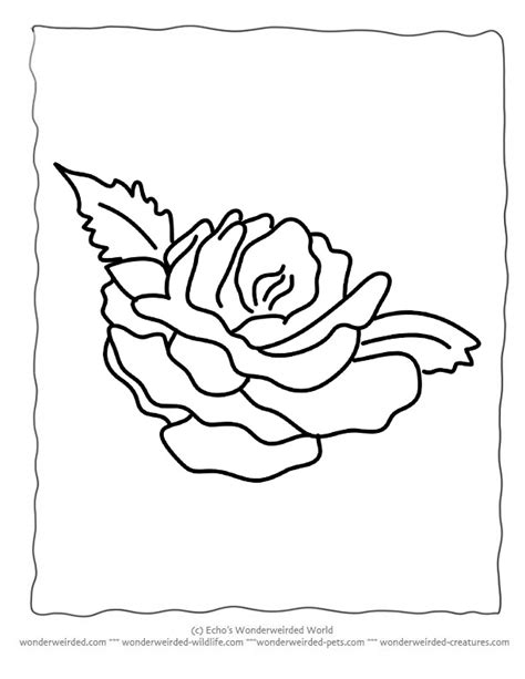 coloring pages rose az coloring pages flower coloring sheets rose free printable flower coloring