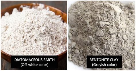 Diatomaceous Earth And Liver Detox by Diatomaceous Earth To Detoxify Radiation Heavy Metal