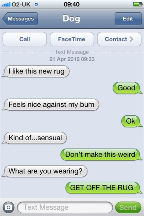 best sext messages the 13 best sexts from quot text from quot barkpost