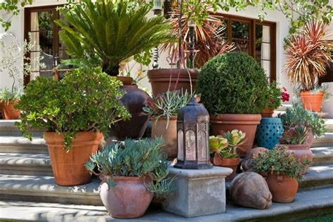 Container Garden Design Ideas Garden Design Los Angeles Ca Photo Gallery Landscaping Network