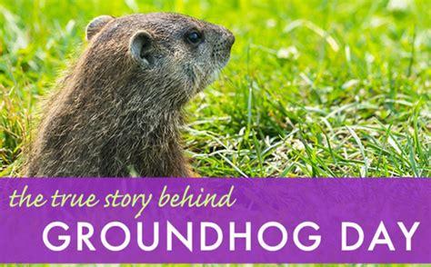 the true story day the true story groundhog day lead big 171 inhabitat