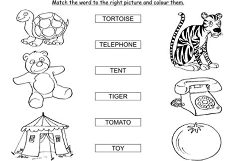 activity match the words starting with t colored