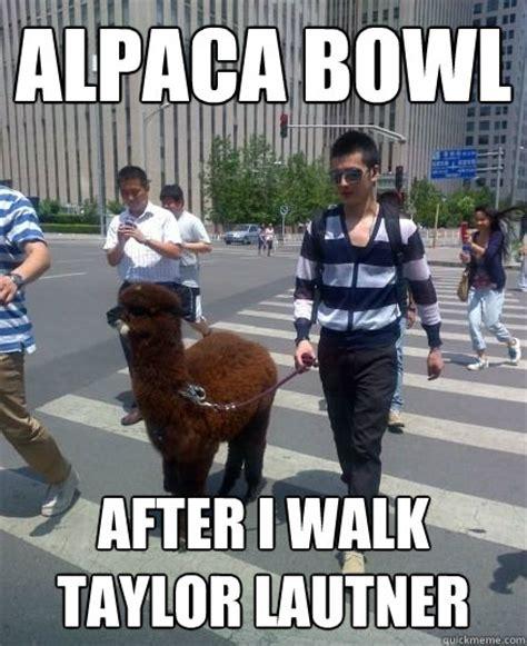 Taylor Lautner Meme - taylor lautner llama look alike