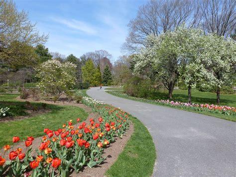clark gardens botanical park tecnoverde realizza parchi pubblici e privati