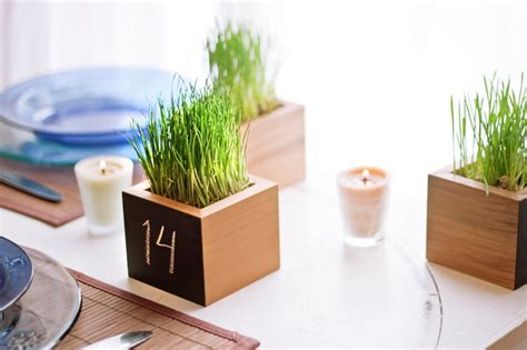 Wheatgrass Planter by Wheat Grass Planter Table Number For Weddings And Events