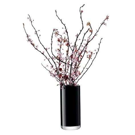 Black Flower Vases by Buy Lsa International Flower Colour Black Cylinder Bouquet