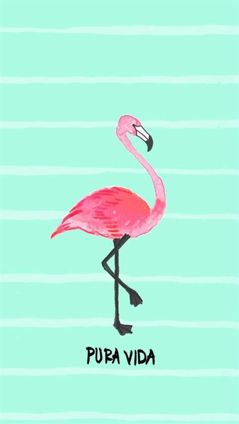 wallpaper iphone flamingo pinterest the world s catalog of ideas