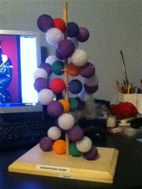 3d Dna Model Styrofoam Balls