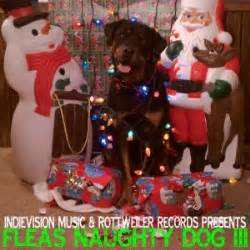 rottweiler records rottweiler records quot fleas vol 3 quot hm magazine