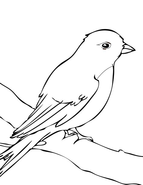 Mockingbird Coloring Page a mockingbird coloring pages