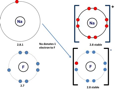 covalent bond diagram n a bond diagram 16 wiring diagram images wiring