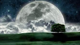 big full moon in night hd wallpaper nature wallpapers