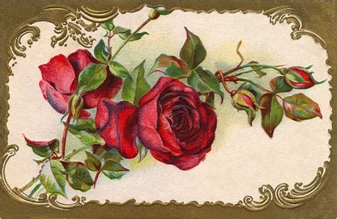 imagenes uñas vintage amarna imagens flores vintage imagens para decoupage