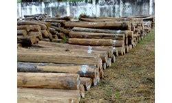 Dipan Kayu Biasa Di Surabaya jual kayu jati di surabaya harga murah distributor dan toko beli