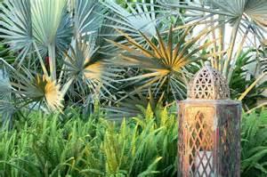 large tropical modern garden highland landscaping home