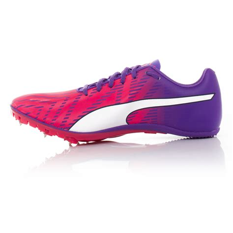 athletic spikes shoes evospeed sprint 7 womens pink purple running spikes