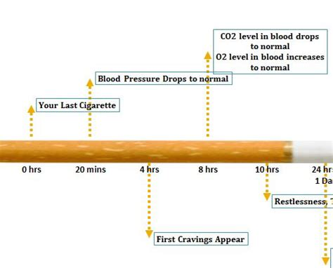 How Does It Take To Detox From Nicotine by Nicotine Withdrawal Timeline
