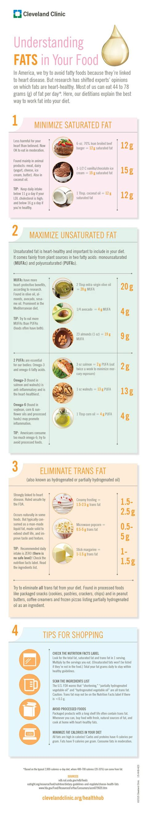 healthy fats infographic are you fats or bad fats infographic the o