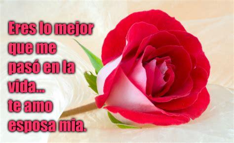 imagenes rojas con frases 23 im 225 genes de rosas rojas con frases de amor romanticas