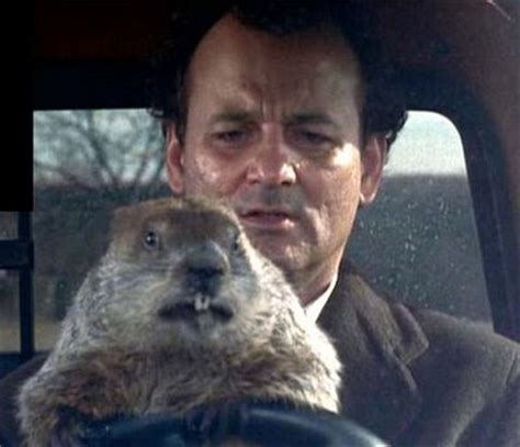 groundhog day 1993 pop culture fiend the 20 most must see of the 90s