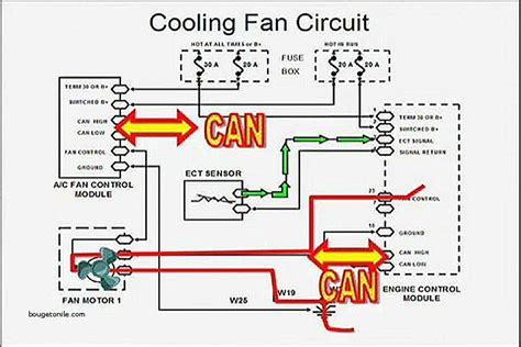 dual radiator fan wiring diagram hvac transformer wiring