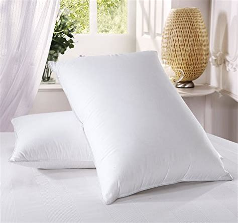 Royal Hotel Goose Pillow by Royal Hotel Goose Pillow Review