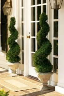 Front Door Trees Swirl Topiaries What A Beautiful Quot Welcome Home Quot Entryways And Front Doors The O